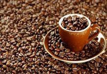 Türkiye ve Dünya Kahve Şirketleri listesi