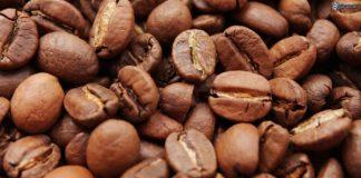 Eğer kahve çekirdeği daha sonra tohum olarak kullanılacaksa çekirdek kabuktan ayrılmaz.